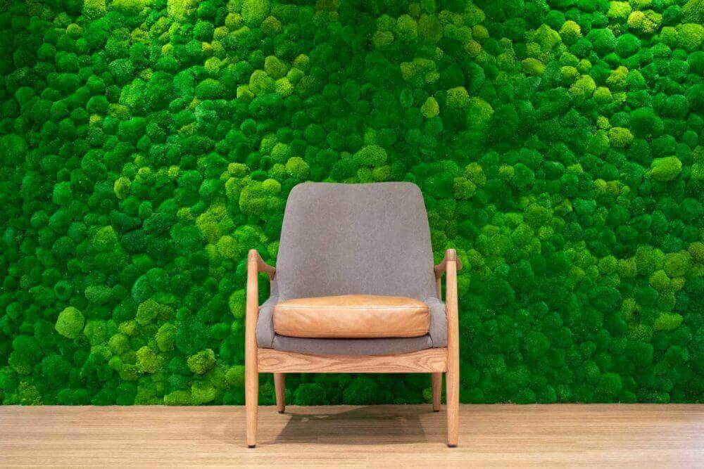 Green mossy wall behind a grey and wood chair